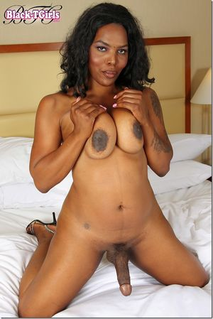 Black Tgirls Update 2 Black Tgirls -..