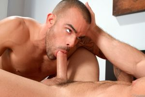 The Gay File - Guys for your pleasure:..