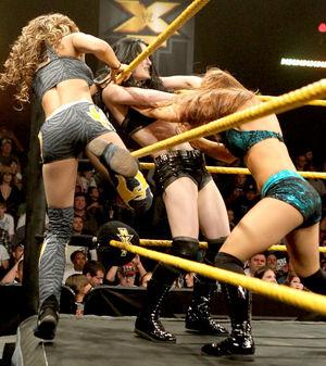 Beautiful Women of Wrestling: April 2013