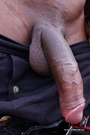 Boyfriends with big veiny cocks