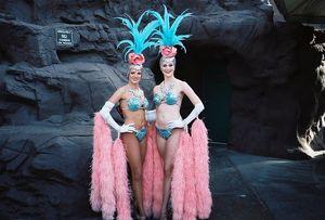 Vegas Showgirls at Tropicana Casino -..