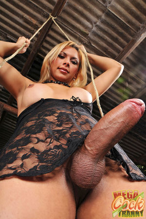 Angel Star - Mega tgirl Angel Star..