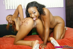 Two lesbian ebonies tasting each..