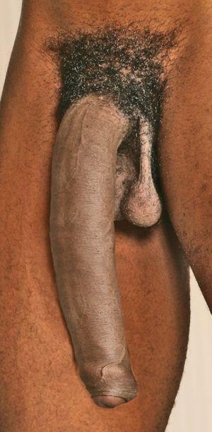 jamaican big dick tumblr - DATAWAV