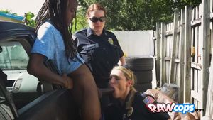 Vandalizer is caught by perverted cops..