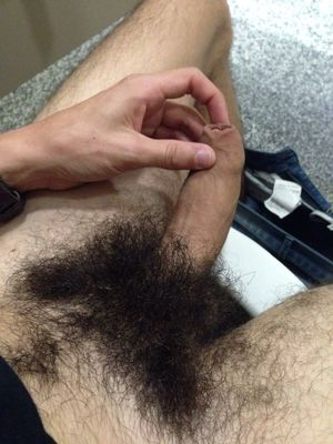 Free pictures of hairy male genitles -..