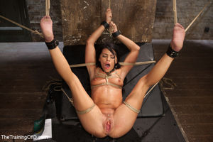 Commit slave girl bondage anal sex -..