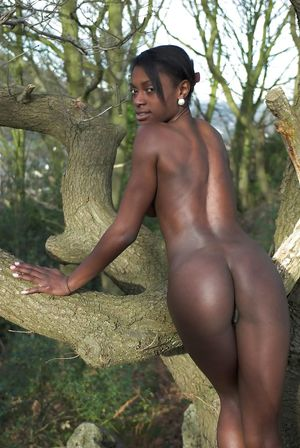 African Tribe nude ebony black archive..
