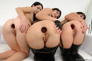 Lesbian anal gape licking - HQ Photo..
