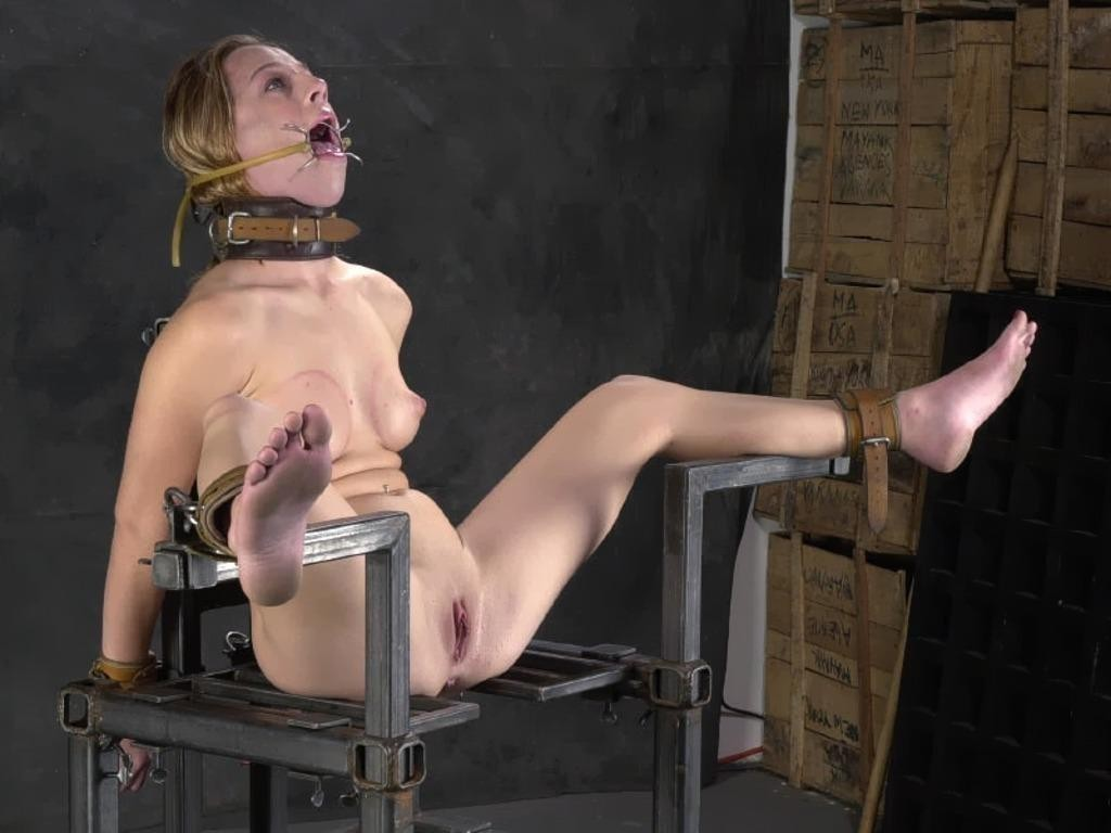 Submission in bdsm