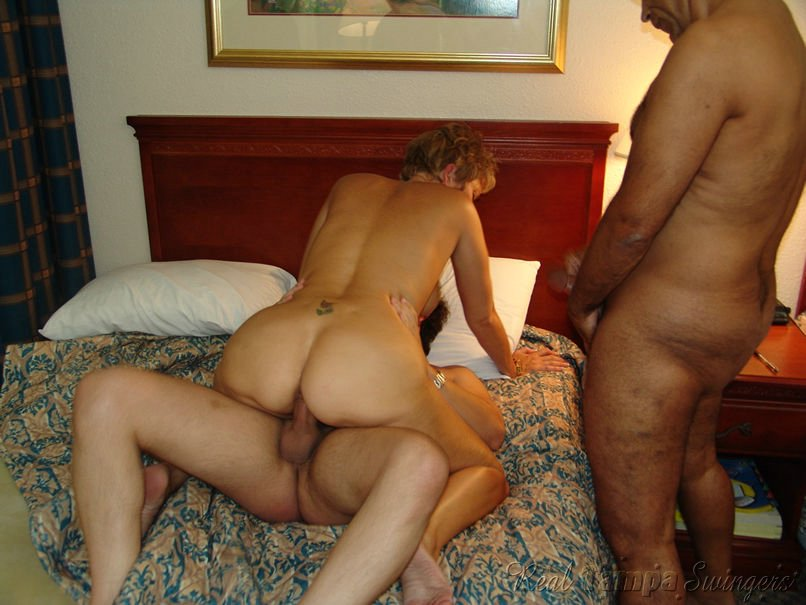 Free Collection Swingers Porn Pics