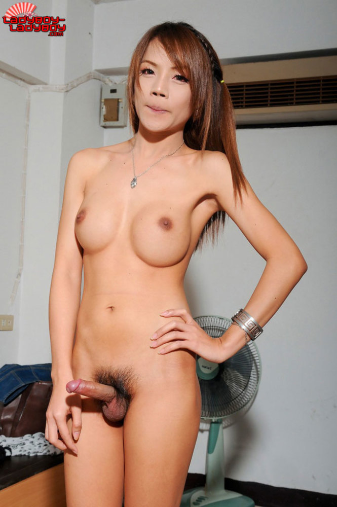 Asian nude shemales